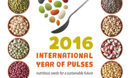 year-of-pulses