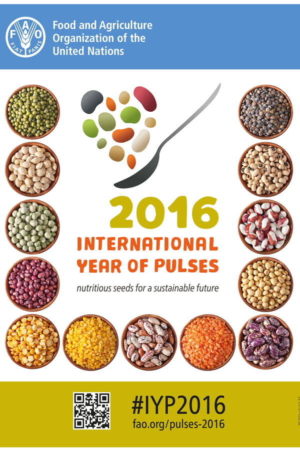 year-of-pulses-poster