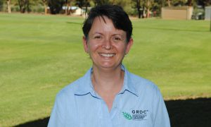 GRDC grower relations manager – west, Jo Wheeler, says lupins have traditionally been grown on narrow row spacings in WA but some growers in recent years have been growing them on wider rows (50cm) in an attempt to improve the drought tolerance of the crop, particularly in drier areas of WA's northern grainbelt. Photo by GRDC.