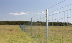 Image: Courtesy of Waratah Fencing