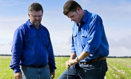 Grower Paul McNulty and QPIF's Bede O'Mara testing soils on the McNulty farm